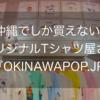 【2020夏】沖縄でしか買えないものが欲しい!Tシャツ編【沖縄 #5】
