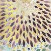 切り絵新作、「太陽san! 」作品でトコナツを感じてほしい!