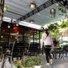ベトナム航空でダナン旅行@鯉カフェでゆるっと休憩