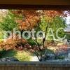 写真AC:もうすぐ結果発表! 和の写真コンテスト!