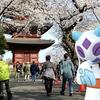池上本門寺の五重塔と桜【ポケモンGOAR写真】和の景色にはやっぱりユキメノコ