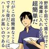 普段家事をしない人は家事の第一歩としてシュフのための夜食に野菜を茹でることからスタートしてみてはどうか。