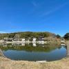 田渕池(岡山県玉野)