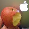 Apple/食糧と機材 〜不揃いではなく、妙に揃った林檎たち〜