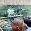 池袋「サンシャイン水族館」にて、お魚や動物たちに癒されました!