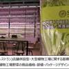 「台湾・植物工場の市場規模と参入事例調査 2015」を発行 ~人工光型設備市場は2025年で100億円にまで拡大予測~