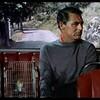 泥棒成金(1955)