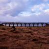 秋の上士幌町糠平湖の紅葉とタウシュベツ川橋梁