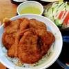 福井の名物カツ丼(卵なし)と、足羽川の桜さんぽ