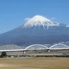 京都から帰ったらトランプ大統領就任