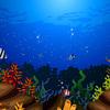 【無料/フリーBGM素材】海底、水族館、ダンス『シーパラダイス』エレクトリックピアノ