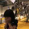3歳の娘と楽しんでいる、恐竜の絵本。