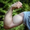 バーベルカールで腕の筋肉を鍛え上げよう!