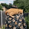 ストリートキャット・ボブの過去と現在、そして未来? / A Street Cat Named Bob Today