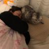 枕を奪われる。
