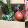 【ふるさと納税】奈半利「ちょこっと野菜」4月分