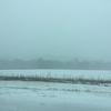 大雪でハイウェイを疾走