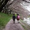 桜の記憶 #3