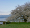 芦ノ湖(神奈川県箱根)