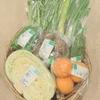 有機野菜をご自宅に!札幌市内近郊に週に一度お届けします!