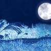 ホワイトデーおもしろいお返し:月に名前をつけよう!