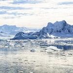 「南極物語」のタロとジロ。現在、南極では犬の持ち込みは禁止されている。