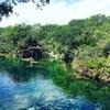 ユカタン半島に来たら絶対外せない、神秘の泉 セノーテ