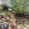 拡張した 花壇の連杭 修理です