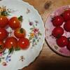 ミニトマトの飾り方   in  盛岡&西郷