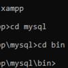 Xamppを使ってせっせとMySQLの勉強を始めることにした。