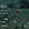 【ブログコラボ】らんらんさんの朗読と私の詩で『雨の日に』を・・・