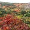 紅葉フェチ&見たい景色を山へ求めて