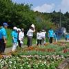 第40回花と緑の環境美化コンクール現地研修会を行いました(7月26日)