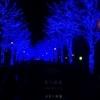 【渋谷】イルミネーションの青の洞窟SHIBUYAを見に行ったら予想以上に青かった【2017】