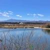 府中通り大山道を歩く その3 相模原・麻溝台から厚木・荻野新宿