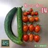 森バナ農園2021⑲ 『収穫(7/5㈪)』