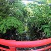 【日本一周】#027 霧やばい。