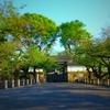 ツツジの咲く風景『北の丸公園 田安門~九段坂公園』