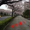 花見……カレイ……☆彡本牧・根岸湾