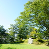 【城山公園】歴史感じられる素敵な公園だよ