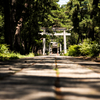Shinto: A religion that blends into everyday life
