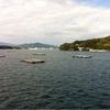 今日の気仙沼湾は、南から見てみた