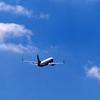 中国国際航空(エアチャイナ)のフライトの予約をキャンセルしました。【変更・キャンセルの英語表現】