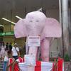 ピンクの象のまち、西荻を歩く