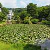 松永記念館の池(神奈川県小田原)