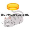 猫に小判になるな!落ちたくないなら「どう使うか」>>>>>「何を使うか」である理由を解説!