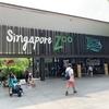 シンガポール旅行(シンガポール動物園へ)