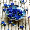 自然の恵みの青を吸い込んだ『青い森の天然青色りんごジャム』。