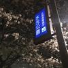 桜・水元公園