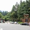 台湾人と行く夏休み台湾旅行#4 溪頭、彰化、台中